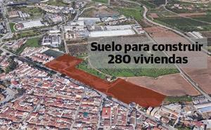 Federico Beltrán compra suelo para construir 300 viviendas en Campanillas