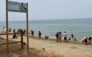El estado de las playas caninas de El Pinillo y Ventura del Mar enfrenta a IU y PP