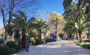 Detenidas dos 'claveleras' por robo con violencia a dos turistas en Málaga mediante el procedimiento de 'la muleta'