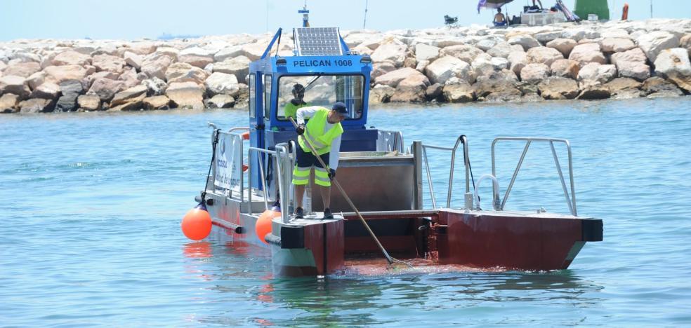Marbella autoriza la instalación de piscinas antimedusas en cinco playas del municipio