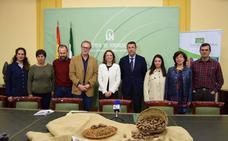 La nuez pacana, una nueva fuente de crecimiento para el Guadalhorce