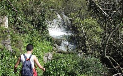 10 escapadas para disfrutar de la primavera en Málaga