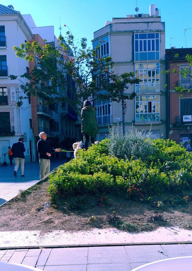 Plaza de Camas: jardinertas utilizadas como pipi-can