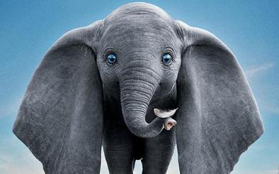 Dumbo domestica a Tim Burton