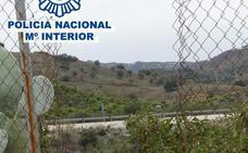 Siete detenidos por el robo de casi 30.000 kilos de aguacates en Vélez-Málaga