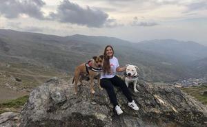 «Somos la única protectora andaluza dedicada exclusivamente a los perros potencialmente peligrosos»