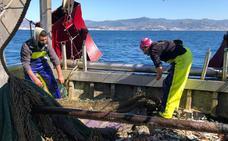 La Cofradía de Pescadores de Caleta lidera un proyecto para minimizar los efectos de los descartes