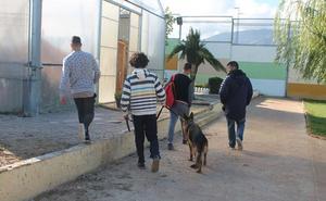 La Junta quiere que los menores puedan cumplir las medidas judiciales en sus provincias