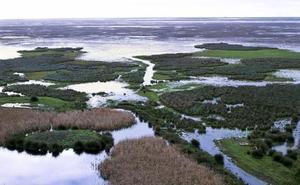 La Federación Andaluza de Municipios y la Confederación Hidrográfica del Guadalquivir se comprometen a mejorar la gestión del agua en los humedales andaluces