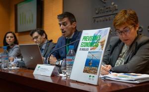 Málaga volverá a liderar con un 2,6% el crecimiento en Andalucía