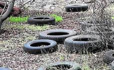 Un bosque de neumáticos junto al Campamento Benítez