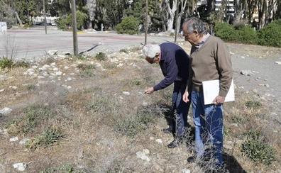 Técnicos de Tragsa revisan los Baños del Carmen ante la próxima devolución del 'camping' a Costas