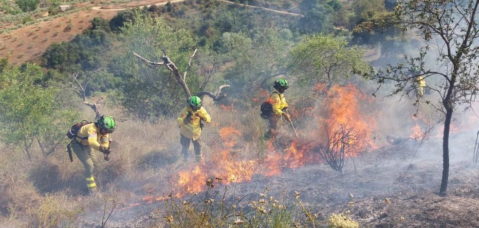 Extinguido el incendio agrícola en Guaro