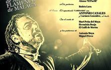 La XXI Noche Flamenca de Cartaojal se celebra el 6 de julio con un gran cartel