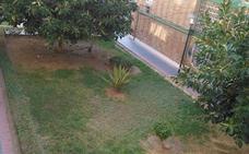 Piden el cuidado de unos jardines en Carretera de Cádiz