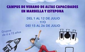 La Asociación de Altas Capacidades organiza un campus de verano bilingüe