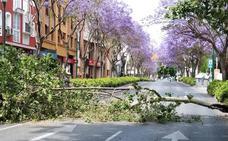 Málaga registra vientos de hasta 70 kilómetros por hora