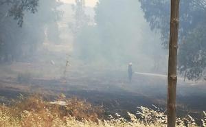 Extinguido un incendio de matorral en Los Asperones