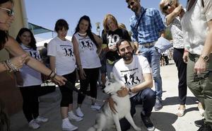 Pérez ofrecerá deducciones fiscales por la adopción de animales abandonados