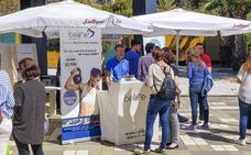 OPPLUS reúne a más de 20 empresas malagueñas