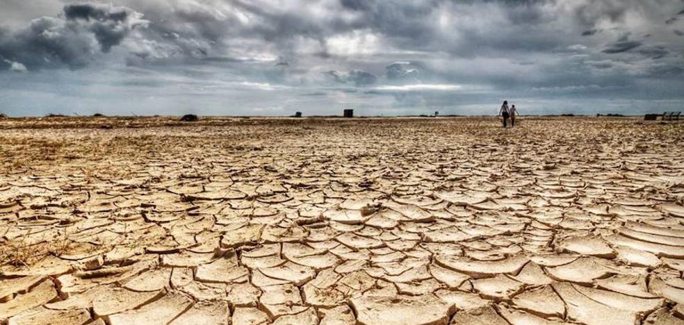 El ecologismo se une para exigir el Gobierno que declare la emergencia climática