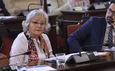 Porras: «Villas del Arenal ha sido una maniobra política para crear alarma social»
