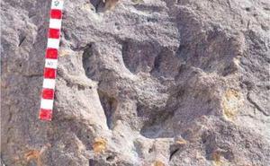 ¿Las huellas de homínidos más antiguas del continente están en Álora?