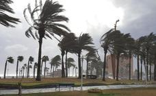 Amenaza de minigalerna este fin de semana en Málaga
