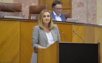 Luz verde por unanimidad a la propuesta parlamentaria para reconocer la gratuidad y universalidad de la educación infantil