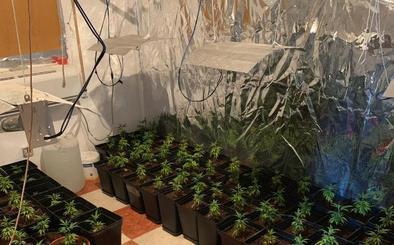 Un incendio en la Palma destapa un laboratorio y una plantación de marihuana