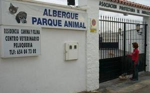 Rechazan suspender pena a la exdueña de la protectora de Torremolinos condenada por maltrato animal