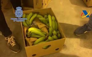 Cae en Estepona un grupo de seis narcotraficantes con 275 kilos de cocaína oculta en bananas
