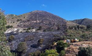 Extinguido el incendio forestal en El Higuerón, que obligó a cortar varios carriles al tráfico