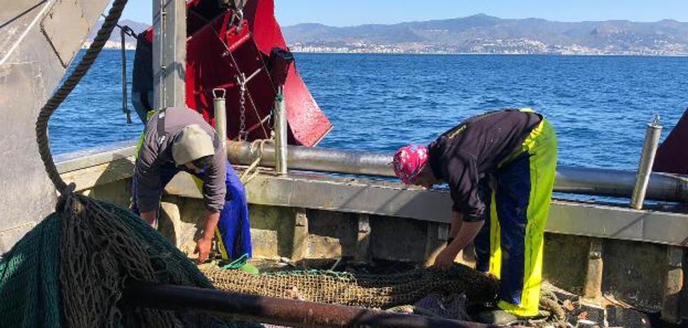 La Junta destina 720.000 euros a ayudas para las organizaciones y asociaciones de productores pesqueros