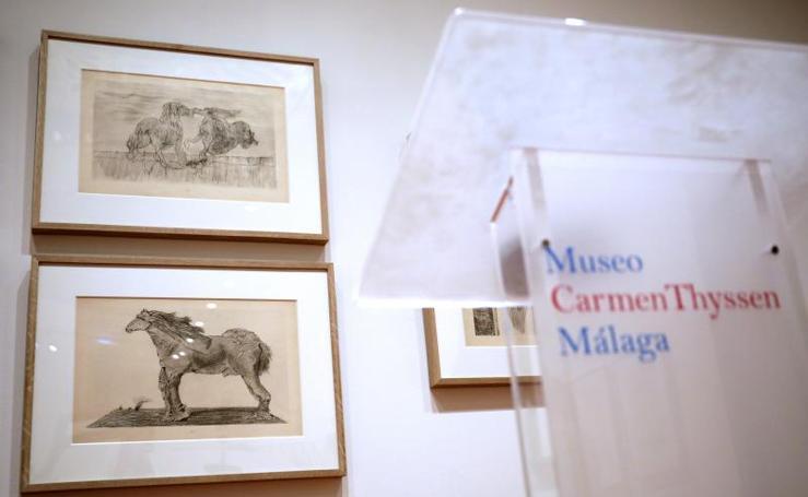 Exposición de Max Ernst en el Museo Carmen Thyssen de Málaga