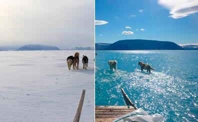 El malagueño que ya avisó del drama del deshielo en Groenlandia