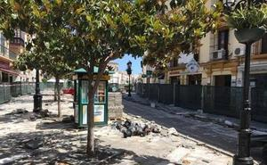Vélez-Málaga paraliza la retirada de los magnolios del centro por la falta de fondos