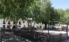El Ayuntamiento fumigará el parque infantil del barrio de San Francisco