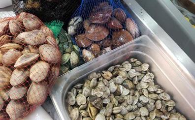 Marisqueros arrementen contra la Junta por no abrir los caladeros de coquina después de dos meses de veda