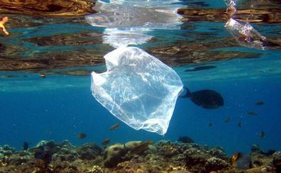 Satélites para acabar con el plástico en mares y océanos