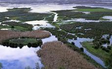 La Unesco pone freno al uso ilegal del agua en Doñana y asume su vigilancia