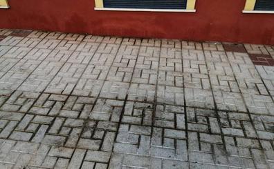 Más quejas por la suciedad en las calles de Málaga