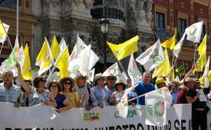 Olivareros exigen un precio justo para el aceite para acabar con el «robo» de 1.500 millones