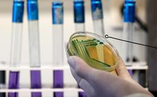 ¿De dónde viene la bacteria fecal E. coli que ha obligado a cerrar los caladeros en Málaga?