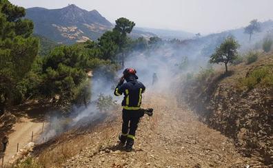 Controlado un incendio forestal en Gaucín