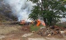 Investigan a dos trabajadores de una empresa de leña como presuntos autores del incendio forestal en El Higuerón