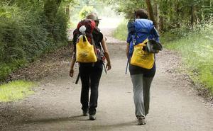 El Camino de Santiago se llena de bolsas amarillas