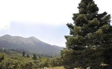 Junta y Estado avanzan en el anteproyecto de ley para declarar Parque Nacional la Sierra de las Nieves
