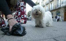 Sancionarán a los dueños de perros que no lleven bolsas para recoger los excrementos y botellas para limpiar el orín
