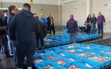 Doce especies salvan la facturación de la pesca en Málaga
